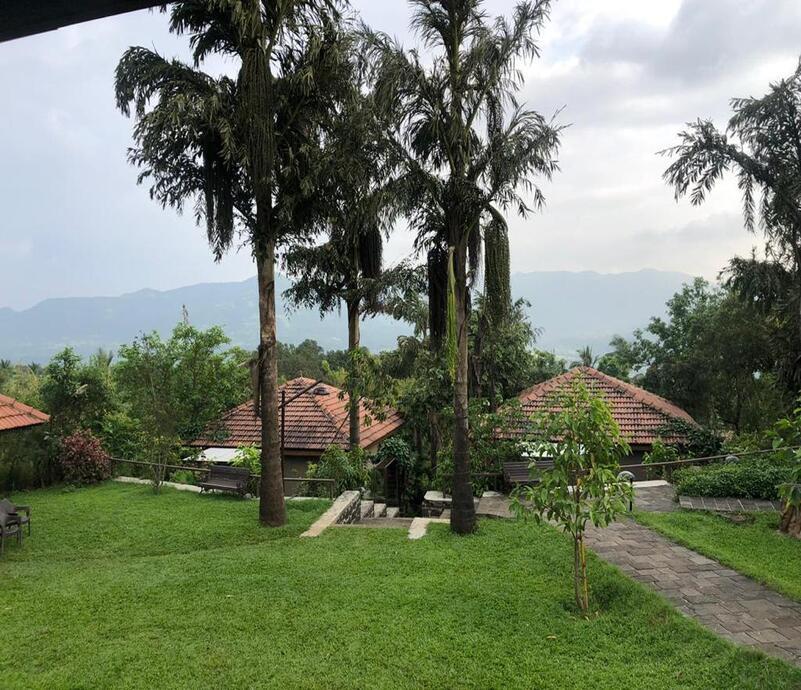 bouganvilla view